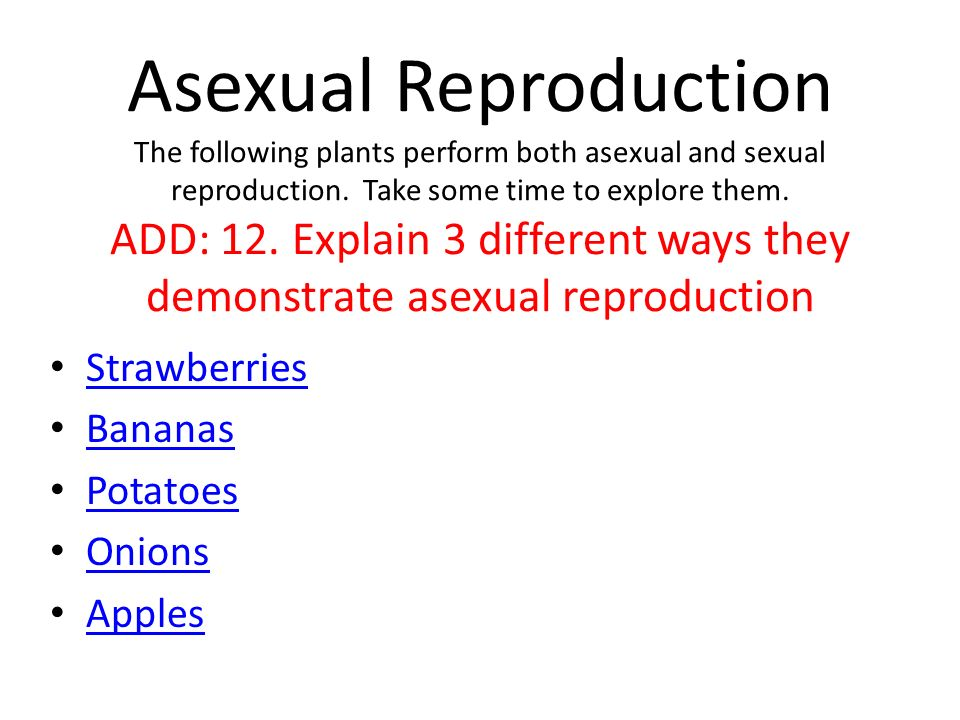 sexual or apples asexual are