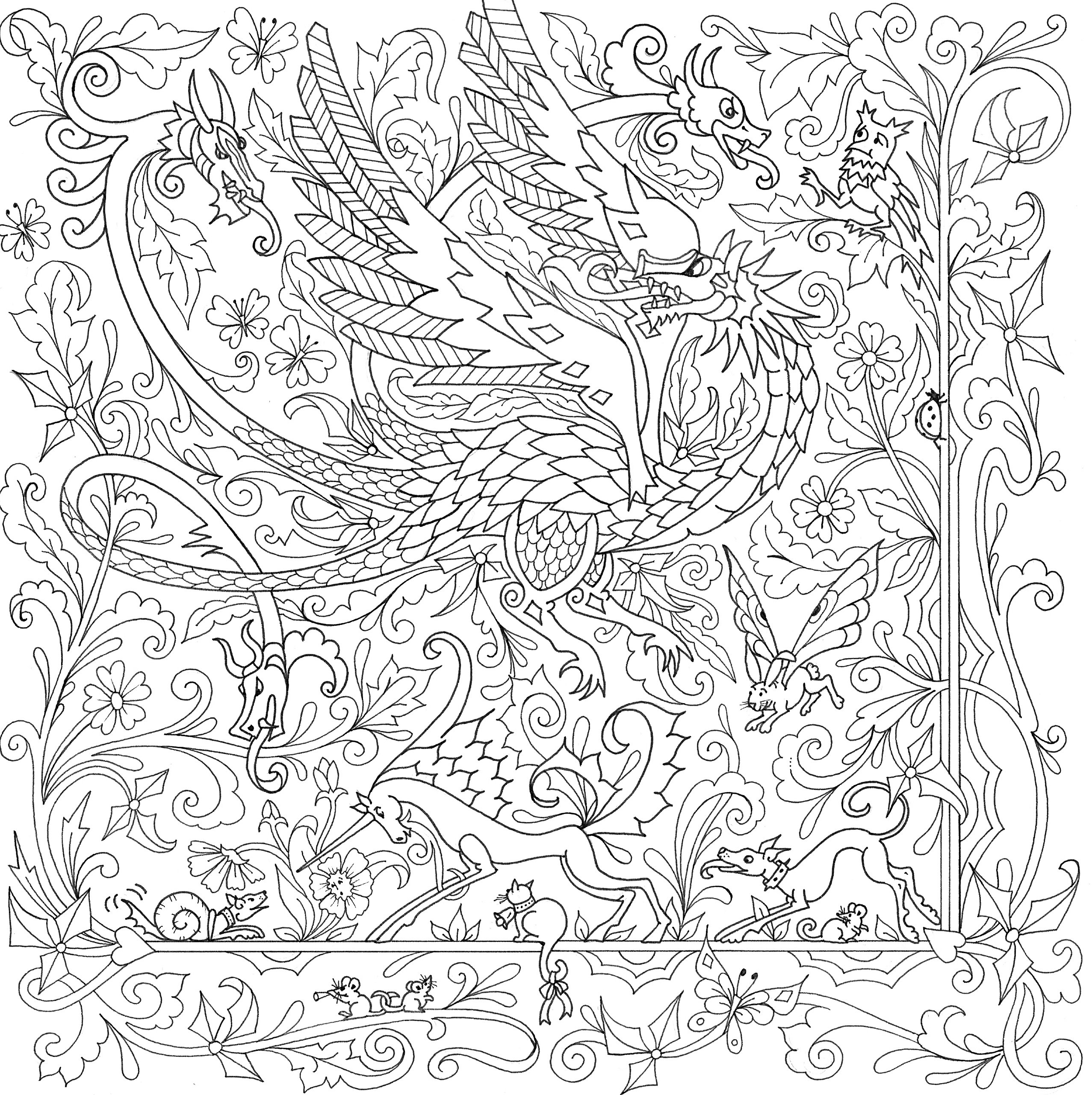 dragon adults books coloring for